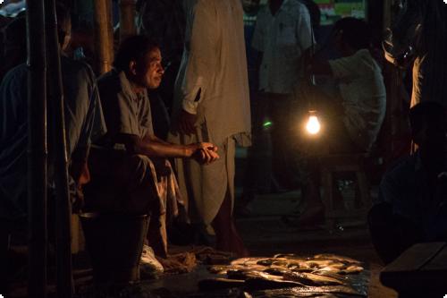 Vendeur de poisson utilisant l'énergie solaire la nuit